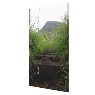 The first step invites hikers up Koko Crater Canvas Print