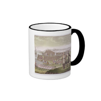 The fishing industry Newfoundland from Le Costu Mug