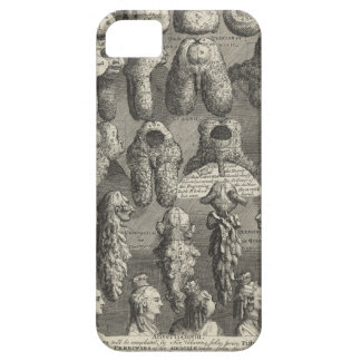 The Five Orders of Perriwigs by William Hogarth iPhone SE/5/5s Case