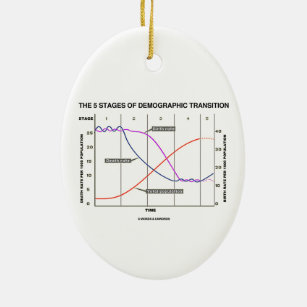 demographic transition model gifts on zazzle