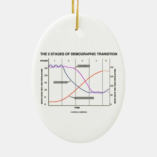 The Five Stages Of Demographic Transition Christmas Tree Ornaments