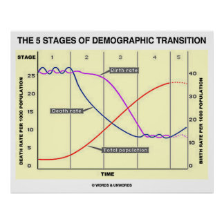 The Five Stages Of Demographic Transition Posters