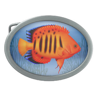 The Flame Angelfish Belt Buckle