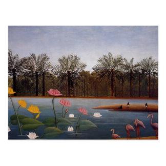 The Flamingos Postcard