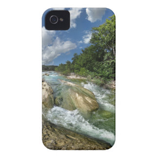 The Flats of Barton Creek in Austin, Texas iPhone 4 Case-Mate Case