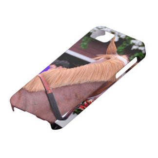 """The Flaxen """"All Included"""" iPhone 5 Cases"""