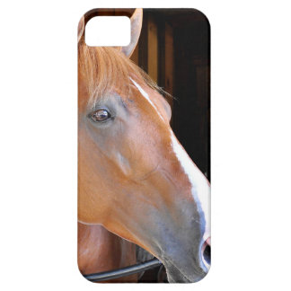 """The Flaxen """"All Included"""" iPhone SE/5/5s Case"""