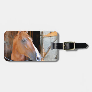 """The Flaxen """"All Included"""" Luggage Tag"""