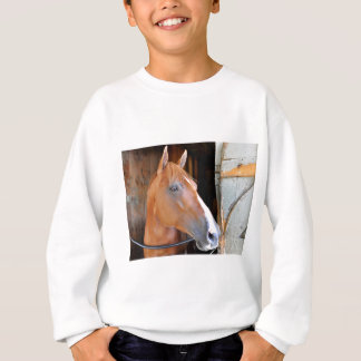 """The Flaxen """"All Included"""" Sweatshirt"""