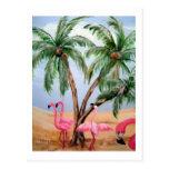 """The Florida Flamingos"" Vertical Wildlife Postcard"