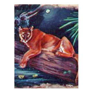 The Florida panther in the swamp Postcard