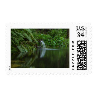 The flow of water in the pond green postage