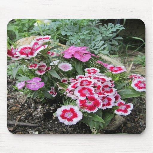 the flower garden mouse pad