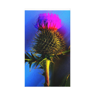 The flower of Scotland. Gallery Wrap Canvas