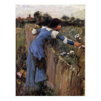 The Flower Picker Postcard