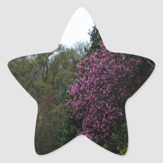 The Flowering Trees Star Sticker