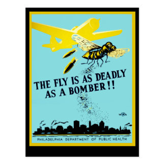 The Fly is as Deadly as a Bomber Postcard