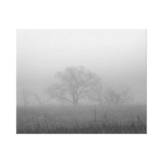 The Fog and Tree canvas print