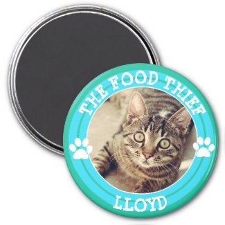 THE FOOD THIEF, Cat Humor Magnets