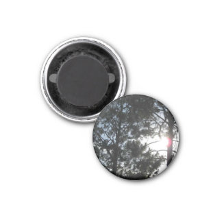 The Forest 1 Inch Round Magnet