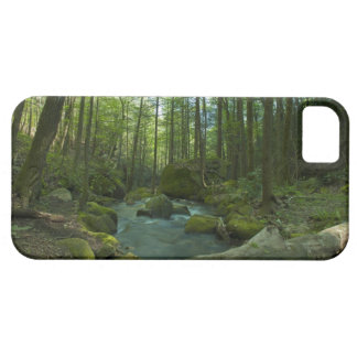 The Forest Escape iPhone 5 Covers