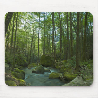 The Forest Escape Mouse Pad