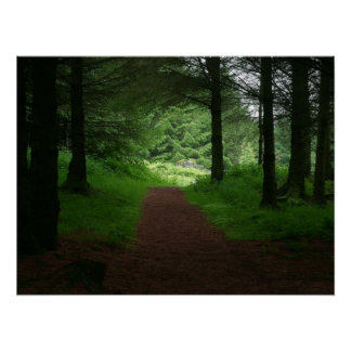 The Forest Path Poster