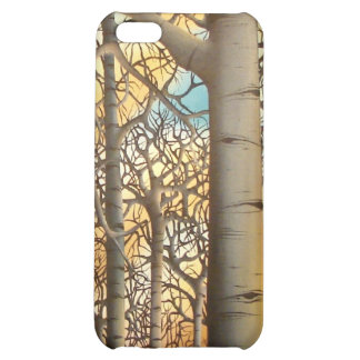 The Forest Through The Trees iPhone 5C Cases
