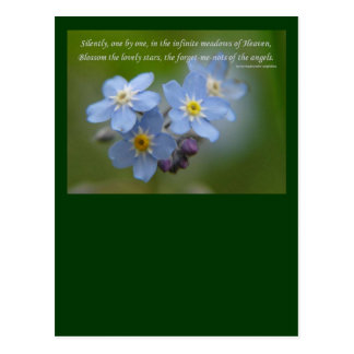 The Forget-Me-Nots of the Angels Postcard
