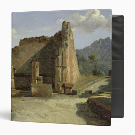 The Forum of Pompeii 3 Ring Binder