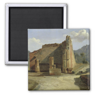 The Forum of Pompeii Magnet