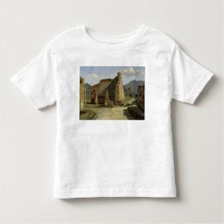 The Forum of Pompeii Toddler T-shirt