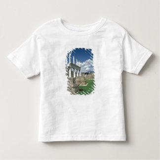The Forum Toddler T-shirt