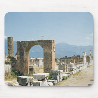 The Forum with the mountains in the background Mouse Pad