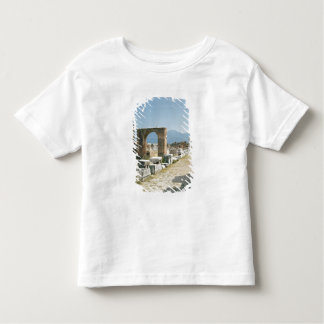 The Forum with the mountains in the background Toddler T-shirt