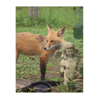 The Fox and the Angel Wood Art Wildlife photograph