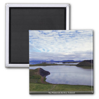 The Fratercula Arctica, Iceland 2 Inch Square Magnet