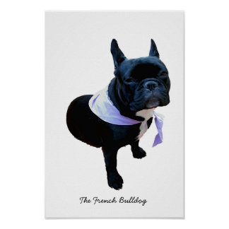 The French Bulldog Poster