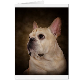 The Frenchie Card
