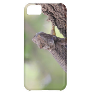 The Friendly Lizard iPhone 5C Cases
