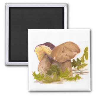The Friendly mushrooms 2 Inch Square Magnet