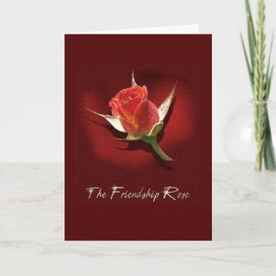 The Friendship Rose