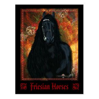The Friesian - Postcard