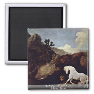 The Frightened Horse By A Lion By Stubbs, George Refrigerator Magnet