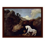 The Frightened Horse By A Lion By Stubbs, George Postcard
