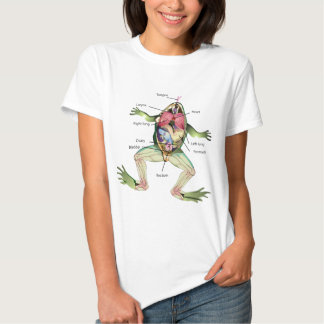 The Frog's Anatomy Graphic Illustration T-Shirt