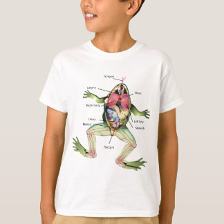The Frog's Anatomy Illustration Drawing T-Shirt
