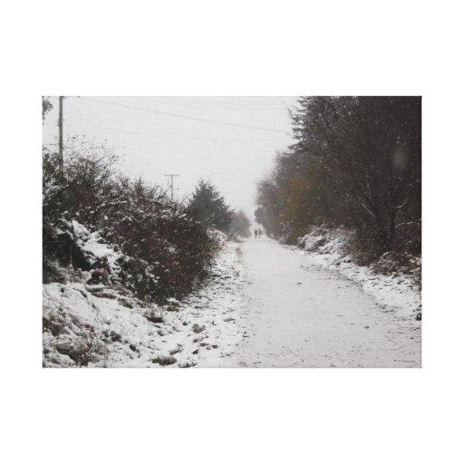 The Frozen Path Canvas Prints