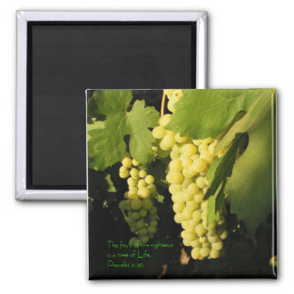 The fruit of the righteous is a tree of... 2 inch square magnet