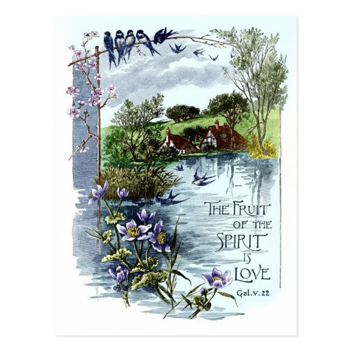 The Fruit Of The Spirit Is Love Postcards